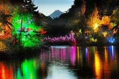 TSB Festival of Lights at Pukekura Park, New Plymouth Time In The World, Travel Around The World, Around The Worlds, Beautiful Places To Visit, Beautiful World, Places To See, Night Scenery, Travel Planner, Travel List