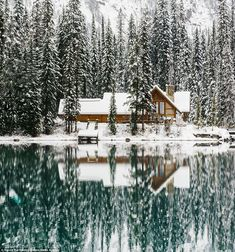 Set on Yoho National Park's Emerald Lake, this upscale lodge sits close to the Canadian Rockies
