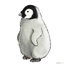 Image result for penguin drawings