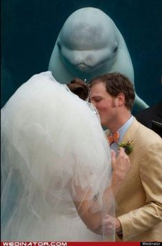 By the power invested me by the Ocean Lord, I now pronounce you husband and wife. You may now kiss your bride.
