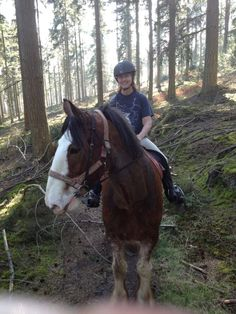 Gilly in a happy place - on a Clydie's back! Clydesdale Horses, Riding Helmets, Times, Happy, Animals, Animales, Animaux, Ser Feliz, Animal