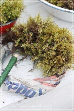 How To Dry Basil, Herbs, Christmas, Diy, Xmas, Bricolage, Herb, Navidad, Do It Yourself
