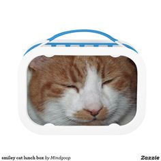 smiley cat lunch box