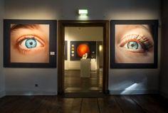 """Hier lohnt es sich im wahrsten Sinne des Wortes mal einen Blick draufzuwerfen: An der Ausstellung """"Augenblick!"""", die bis zum 26. Juni besucht werden kann, waren unter anderem die Zoologische Sammlung und das Institut für Kunstgeschichte der FAU beteiligt. (Bild: Erich Malter)"""