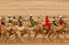 Camal racing