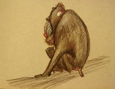 Baboon by ~AndreaGerstmann on deviantART
