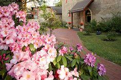 Der blühende Schlossgarten Plants, Lawn And Garden, Plant, Planets
