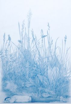ZACHARI LOGAN, Tales of an Imaginary European, Durer. Blue pencil on mylar, 10 x 16 inches, 2012