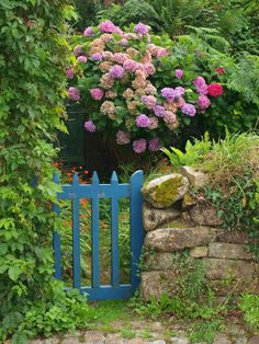 Color on a gate