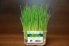 Urban Produce's organic, living microgreens and wheatgrass are now available for retail purchase at Vons and Pavilions. A total of 226 stores across Southern California will carry Urban.....