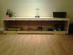 Cool ferret cage.. More tunnels and a little taller though
