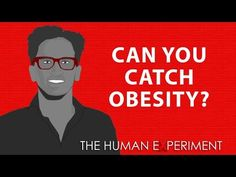 Can you really 'catch' obesity? - http://quickreduceweight.com/can-you-really-catch-obesity/