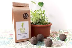 'Schmetterlingstanz' Seedballs - 10er Packung Seedbombs #heimgruen