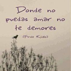frases de Frida Khalo