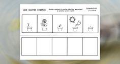 Pracovný list - od semienka k rastlinke
