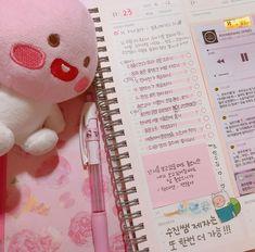 Korean pink study tracker and plushie