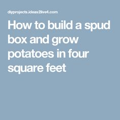 How to build a spud box and grow potatoes in four square feet