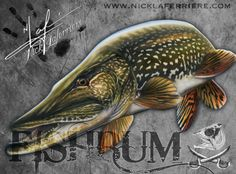 Northern Pike mixed media by Nick Laferriere