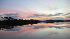 Soft pastels are floating in the sky this sunrise morning on a pond at Kiawah Island, South Carolina. Bird Watching, South Carolina, Pond, Sunrise, Framed Prints, Sky, Island, Wall Art, Beach