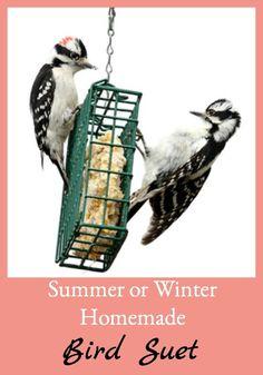Summer or Winter Homemade Bird Suet