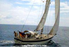1989 Hallberg Rassy 312 MKII - Boats.com