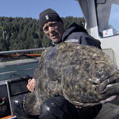 Holy Halibut! Jeremy Reels In Monster Alaskan Killer