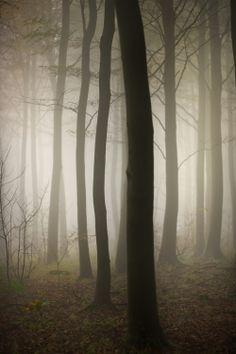 Vanishing Point (by Alan MacKenzie)
