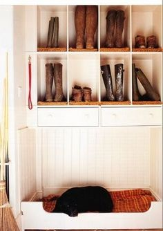 Built in dog bed is cute, but I love the rug in each cubicle to keep it clean from the bottom of the boots!
