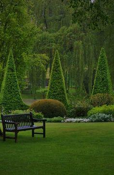 Wooden bench in green shaded lush garden
