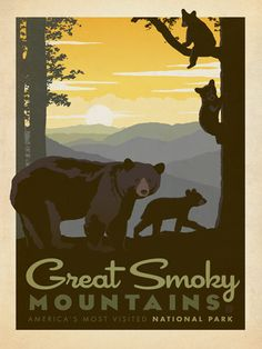 great vintage travel poster  Great Smoky Mountains: Mama Bear & Cubs