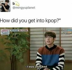 Wonwoo - How did you get into kpop? Wonwoo, Jeonghan, Btob, Day6, Vixx, K Pop, Bigbang, Seungri, Too Funny