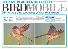 Birdmobile - uit deze fantastische serie natuurgetrouwe bouwplaten het Smelleken.