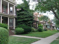 Nice Neighborhood Street I love the giant Evergreens!