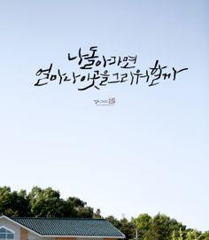 캘리그라피 / Calligraphy / Korean Calligraphy