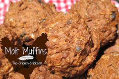 Since feathers consist of 85% protein, feather production places great demands on a chicken's energy and nutrient stores. We can help them keep up with those demands by increasing their protein intake during the molt. I created a recipe for muffins that are high in protein, using primarily ingredients that they would naturally seek-out during a molt.