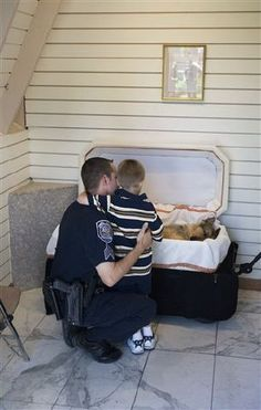 Police Dog. Some working animals don't get the respect they deserve. Rest in peace <3