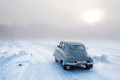 an 'ice-blue' snowy!