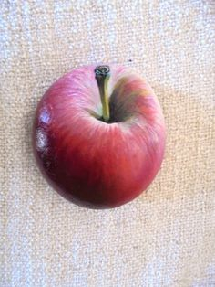 Hand painted apple rock