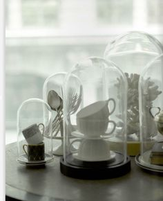 White objects in glass bell jars #white