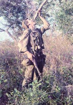 Interessantissime le foto dei soldati portoghesi che appaiono nel sito che hai segnalato. Degno di nota il fatto che sono dotati di fucili d'assalto Armalite AR-10 in calibro 7,62 NATO,