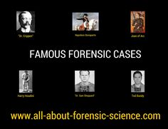 What classes do i have to take in high school and college to be a forensic analyst?