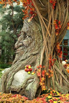 Fall display at the Bellagio in Las Vegas. Wise old tree man. Weird Trees, Dame Nature, Tree People, Tree Faces, Autumn Display, Tree Carving, Unique Trees, Old Trees, Tree Sculpture