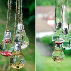 19+ Awesome DIY Ideas For Recycling Old Light Bulbs - Terrariums
