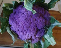 No empty-flavored beauty: Try this Slow-Roasted Purple Cauliflower Recipe Purple Cauliflower Recipe, Broccoli Cauliflower, Cauliflower Recipes, Veggie Recipes, Healthy Recipes, Purple Love, All Things Purple, Slow Roast, What's Cooking