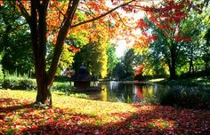We love these colors in Wiesbaden, #Germany in the fall! #FallFoliage (Thanks for pinning, @kellyramme)