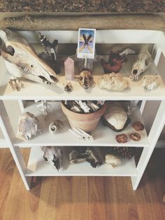 Bone Collection via Roots & Feathers