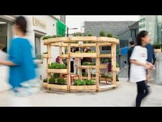 This video explores a modular urban farming system called Growmore, which allows people to build mini gardens from a series of simple plywood planters Organic Gardening, Gardening Tips, Urban Gardening, Balcony Herb Gardens, Mini Gardens, Vertical Green Wall, Farming System, Mini Farm, Plantar