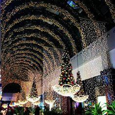 Photos at Amoreiras Shopping Center - Shopping Mall in Lisboa Shopping Center, Shopping Mall, Portugal, Business Travel, Xmas Tree, Christmas Time, Things To Do, Europe, World