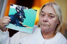 Perra murió de cáncer de pulmón causado por el humo del cigarrillo que fumaba su deña | Seamos Más Animales... Como Ellos