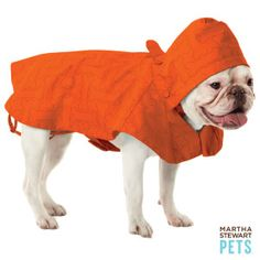 Martha Stewart Pets Orange Raincoat--$19.99. I want to get for Ichabod ^_^